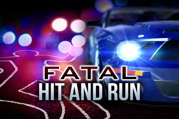 fatal hit and run